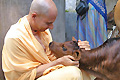 Radhanath Swami on Reciprocation of Love